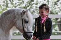 Pony Tiffi auf dem Reiterhof Bartel_2