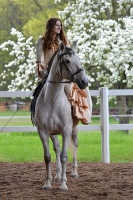 Pferd Valoroso auf dem Reiterhof Bartel_2