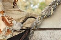 Pferd Valoroso auf dem Reiterhof Bartel_4